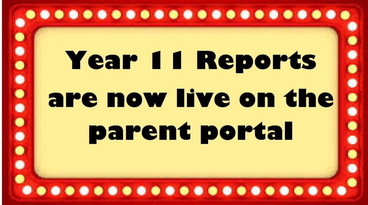 Year 11 reports